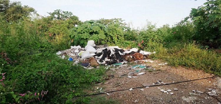 Irresponsables vecinos de Valle Dorado crecen basurero clandestino