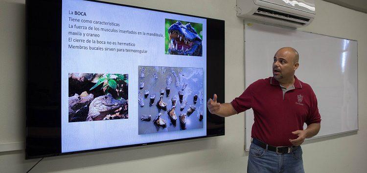 """Para protegerlos: capacitan sobre """"manejo y conservación de cocodrilos"""""""