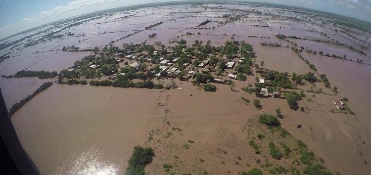 Nayarit perdió más de tres mil hectáreas de cultivo tras paso de 'Willa'