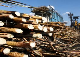 EU exporta fructosa a México a precios 80% menores que el estándar: Unión de Cañeros