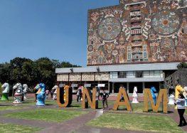 Crece el culto a la virgen, asegura investigadora de la UNAM